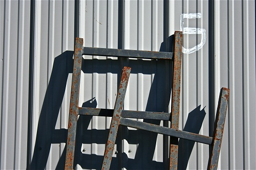Sheri L. Wright - Ladder