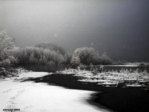 white rain watermerk copy