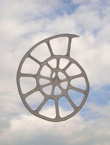 Celtic Wheel x