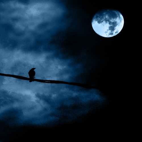 garga i luna