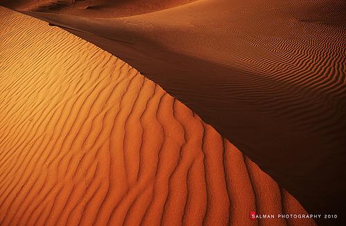 VEINS OF DESERT