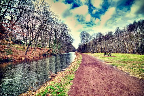 along_the_canal