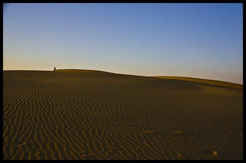 Desert, Rajhastan