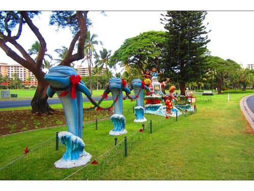 Katie Lenihan, Hawaii